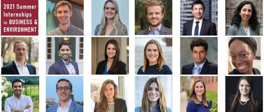 Student Spotlight: Summer Internships in Business and Environment