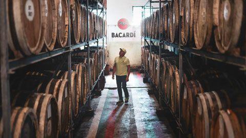 man standing among bacardi barrels