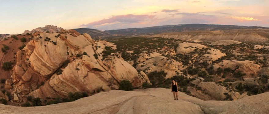 MBA Students Reflect on Their Summer Internships