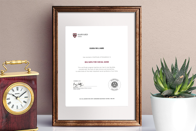 Big Data for Social Good Certificate of Completion from Harvard Online